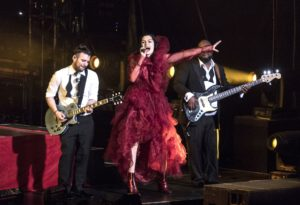 Jessie J concert problemele de infertilitate
